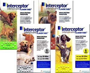interceptor for dogs